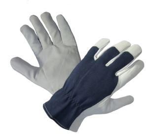 RĘKAWICE OCIEPLANE SKÓRA KOZIA Ocieplane całodłonicowe rękawice ze skóry licowej koziej, krój amerykański. Strona grzbietowa z bawełnianego dżerseju, strona chwytna dłoni, kciuk i końcówki palców ze skóry licowej koziej. Od wewnątrz ocieplone miękką tkaniną polarową. Rozmiar: 10